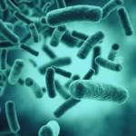 Как сохранить здоровье кишечника при лечении простуды
